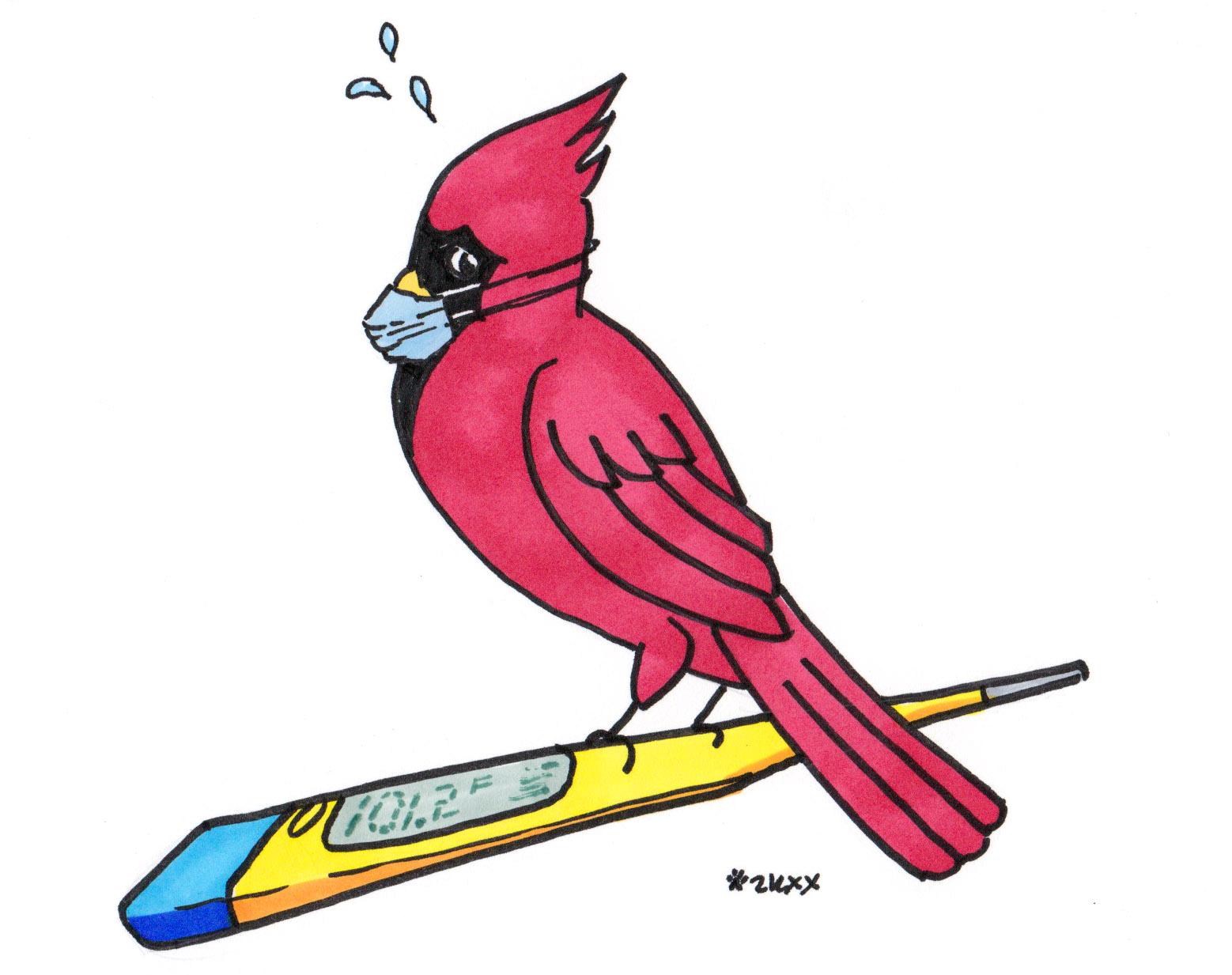 sick Cardinals